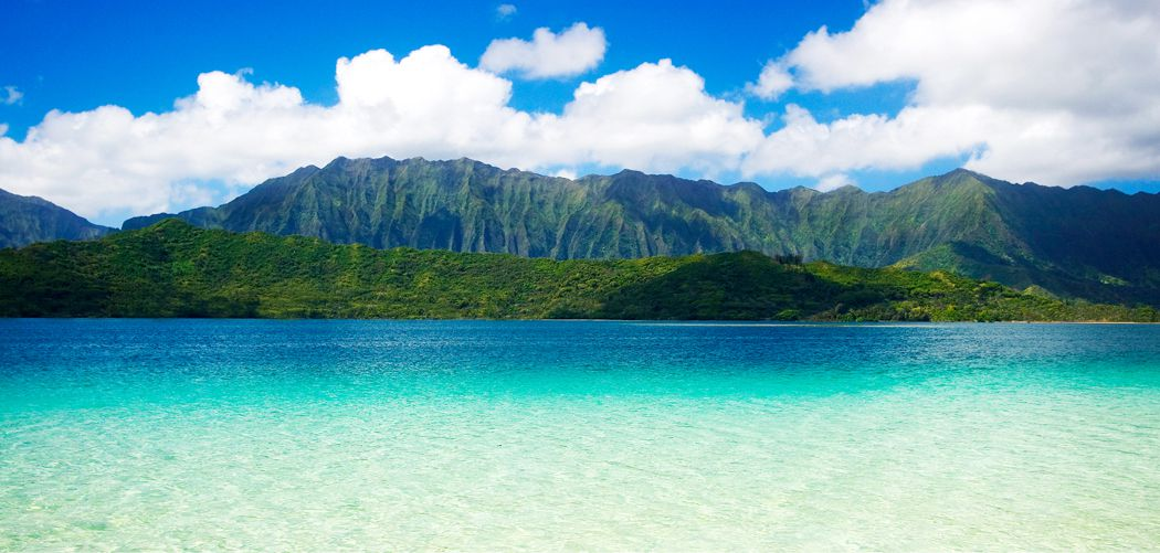ハワイと日本の相性